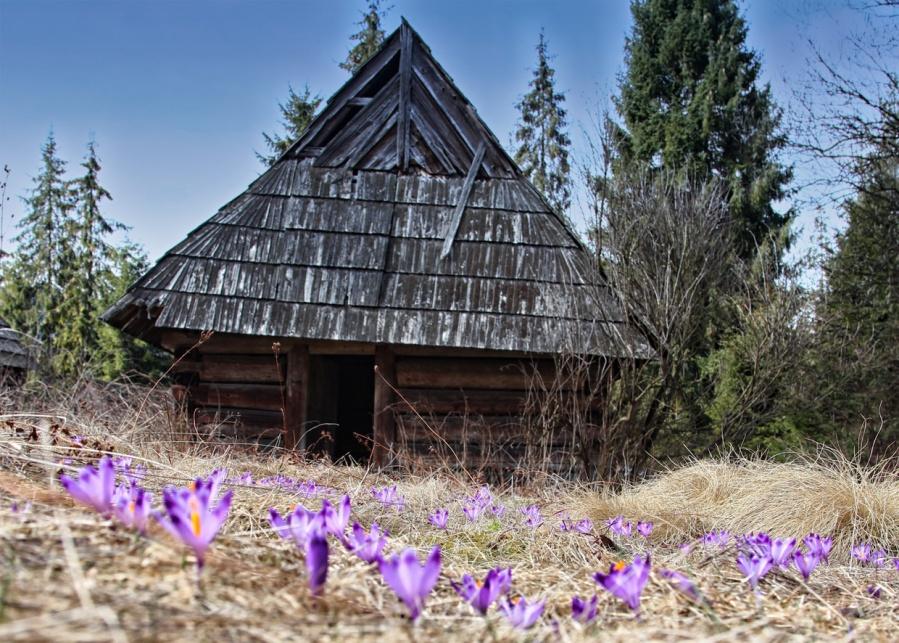 Wiosna Zawitała Do Naszych Drzwi Witamy Na Blogu